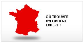 toutes nos documentations - Xylophene Color